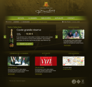 Webdesign Boutique Champagne